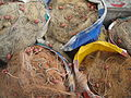 Fishing nets - Fishing equipment.JPG
