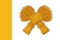 Flag of Shatck (Ryazan oblast).png