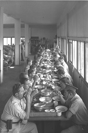 Flickr - Government Press Office (GPO) - Kibbutz Ein Harod Dining Hall.jpg