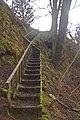 Flight of steps in Glen Rha - geograph.org.uk - 708766.jpg