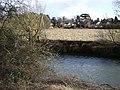 Flood meadow, Myton - geograph.org.uk - 1197412.jpg