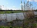 Flooded Aylestone Meadows. - geograph.org.uk - 356261.jpg