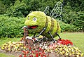 Floral display, Rushpark, Newtownabbey - geograph.org.uk - 1433973.jpg