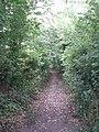 Folly lane - geograph.org.uk - 191625.jpg