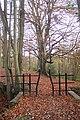 Footbridge near Spratsbourne Farm - geograph.org.uk - 1592375.jpg