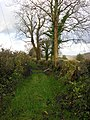 Footpath - geograph.org.uk - 1589920.jpg