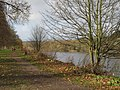 Footpath by the River Tyne - geograph.org.uk - 1081015.jpg