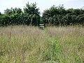 Footpath near Bushton - geograph.org.uk - 1448636.jpg