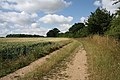 Footpath near Denston - geograph.org.uk - 1394158.jpg