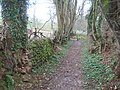 Footpath near Otterton - geograph.org.uk - 1771556.jpg