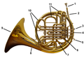 French horn front labelled.png