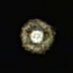 Fried Egg Nebula.jpg