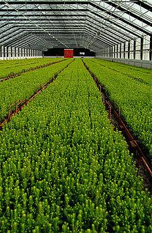 gartner uddannelse københavn