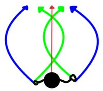 Flying disc techniques - Trajectories of tilted discs Red: Axis of thrower's body Blue: Outside-in curve Green: Inside-out curve
