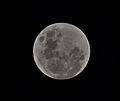 Full moon kottayam kerala.jpg