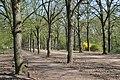 Gödöllő, Erzsébet park, 4.jpg