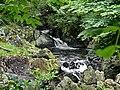 Ganllwyd NNR - panoramio (14).jpg