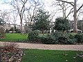 Garden within Bedford Square - geograph.org.uk - 1702308.jpg