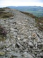 Garn Boduan Hillfort - geograph.org.uk - 276317.jpg