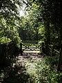Gate near Bridewell - geograph.org.uk - 472281.jpg