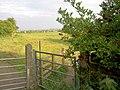 Gates onto the ings. - geograph.org.uk - 521815.jpg