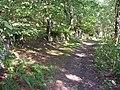 Gateway into the wood, Binns Top Lane, Southowram - geograph.org.uk - 253744.jpg