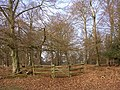 Gateway to the Church Place corner of the Denny Inclosure, New Forest - geograph.org.uk - 117325.jpg