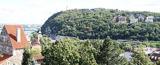 Gellert Hill IMG 1021