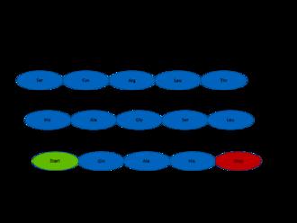 Gene prediction - Image: Gene Prediction
