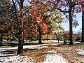 Georgia snow IMG 5519 (38969127561).jpg