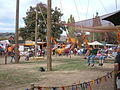 Giant Swings at Norcal Ren Faire 2010-09-19 3.JPG