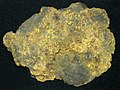 Gold (Gold Coin Mine, Philipsburg, Montana, USA) (16992522357).jpg