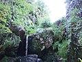 Gorge at Kailrine Hole - geograph.org.uk - 538662.jpg