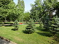 Gradski Park-Skopje (10).JPG