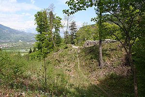Grafenberg ruins