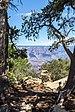 Grand Canyon (Arizona, USA), South Rim nahe Tusayan -- 2012 -- 5844.jpg