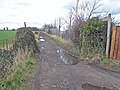 Great North Forest Trail at Fence Houses - geograph.org.uk - 352247.jpg