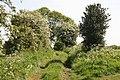 Green Lane - geograph.org.uk - 815473.jpg