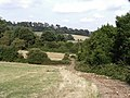 Greensand Way, near Sevenoaks Weald - geograph.org.uk - 219959.jpg