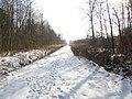 Guryevskiy r-n, Kaliningradskaya oblast', Russia - panoramio.jpg