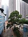 HK TKO 將軍澳 Tseung Kwan O 唐俊街 Tong Chun Street footbridge view November 2019 SS2 02.jpg