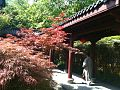 HZ 杭州 Hangzhou 永福寺 Yongfu Temple China Tourism 2012 red trees long covered corridor visitor.jpg