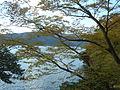 Hakone Ashinoko lake dsc05534.jpg