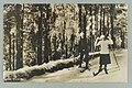 Harjutie, Tarkemmin määrittelemätön paikka, 1910s–1920s PK0127.jpg