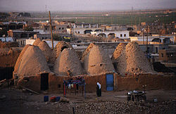Skyline of Harran