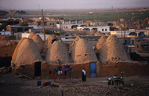 Traditional mud brick houses shaped like beehi...