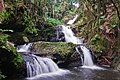 Hawaii Waterfall (3002839586).jpg