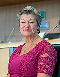 Hearings Ylva Johansson (Sweden) Home affairs (48826433018) (cropped).jpg