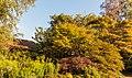 Heesterborder. Locatie, Tuinreservaat Jonkervallei 03.jpg
