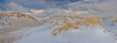 Helgoland Düne Winter.jpg